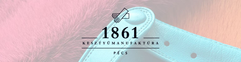 banner-1861